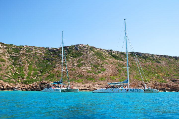 catamarans-mallorca-togheter 75 and 60