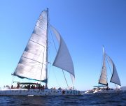 mallorca-catamarans-sailing-togheter 75 and 60