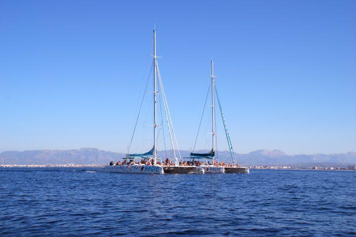 majorca-catamaran-tours